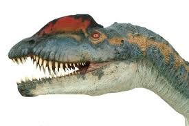 http://www.cmstudio.com/dilophosaurus.html